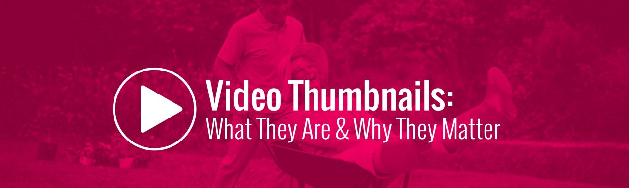 Video Thumbnails Maker Platinum v11.0.0.0 cover
